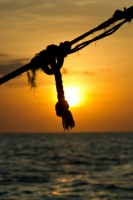 Dhow Sunset Safari