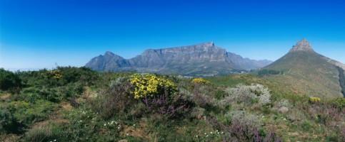 Table Mountain and Lion's Head, viewed from Signal Hill.