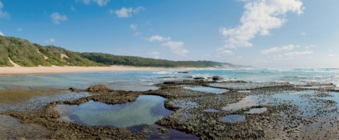 Tide pools and forested sand dunes along South Africa's Indian Ocean coastline near Mabibi, iSimanga