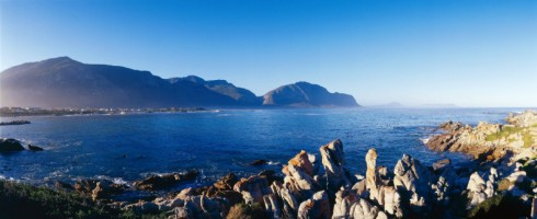 Stony Point Nature Reserve is situated on a small peninsula in Betty's Bay, about 90km from Cape Tow